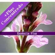 Ess�ncia de Verbena +Plus 100ml