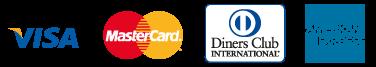 formas de pagamento do site, cartões, visa, mastercard, dinners club e american express.